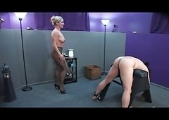 Pantyhose Female-dominant
